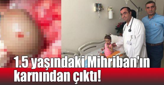 1.5 yaşındaki Mihriban'ın karnından çıktı!