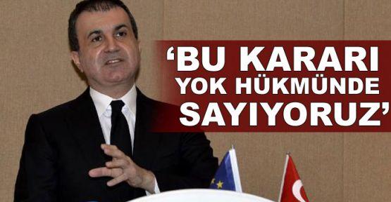 AB Bakanı Ömer Çelik'ten AP açıklaması