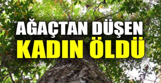 Ağaçtan düşen kadın öldü