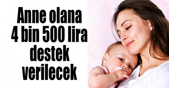 Anne olana 4 bin 500 lira destek