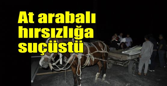 At arabalı hırsızlığa suçüstü