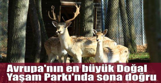 Avrupa''nın en büyük Doğal Yaşam Parkı''nda sona doğru