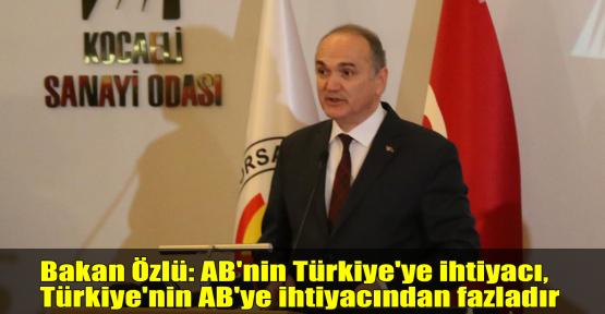 Bakan Özlü: AB'nin Türkiye'ye ihtiyacı, Türkiye'nin AB'ye ihtiyacından fazladır