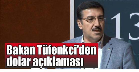 Bakan Tüfenkci'den dolar açıklaması