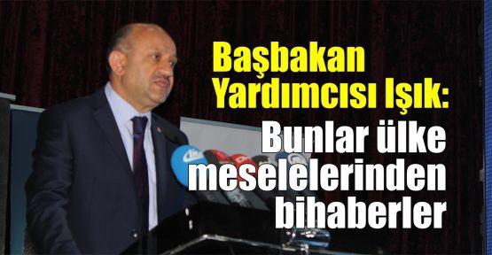 Başbakan Yardımcısı Işık: Ülke meselelerinden bihaberler