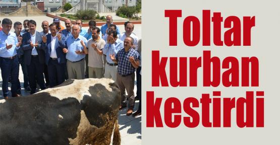 Belediye Başkanı Toltar'dan Şükür kurbanı