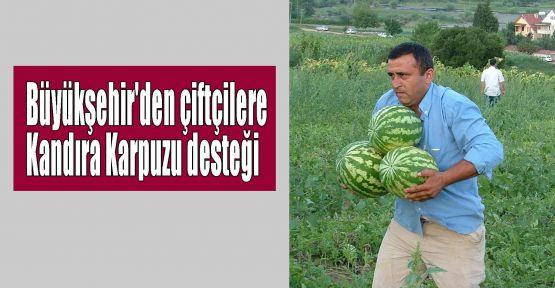 Büyükşehir'den çiftçilere Kandıra Karpuzu desteği