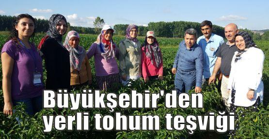 Büyükşehir'den yerli tohum teşviği
