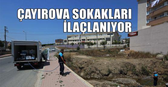 Çayırova sokakları ilaçlanıyor