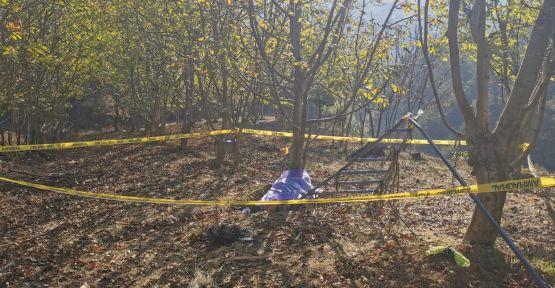 Ceviz toplamak için gittiği bahçede ölü bulundu