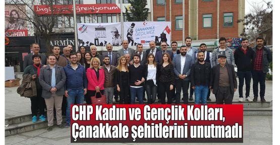 CHP Kadın ve Gençlik Kolları, Çanakkale şehitlerini unutmadı