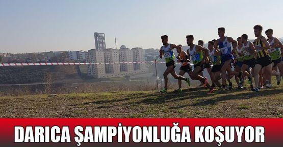 Darıca şampiyonluğa koşuyor