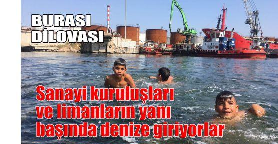 Dilovası'nda sanayi kuruluşları ve limanların yanı başında denize giriyorlar