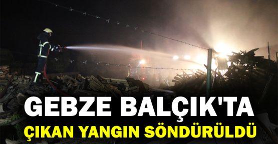 Gebze Balçık'ta çıkan yangın söndürüldü