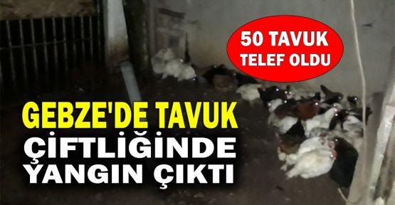 Gebze'de tavuk çiftliğinde yangın çıktı