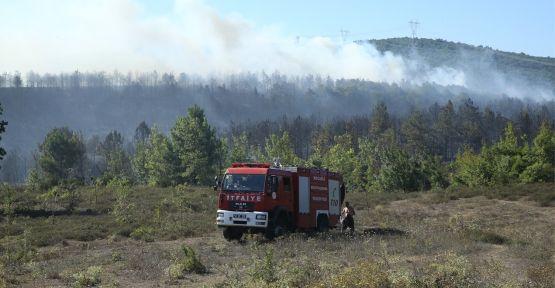 Gebze'deki yangında 25 hektar alan zarar gördü, 2 fabrikada da hasar oluştu