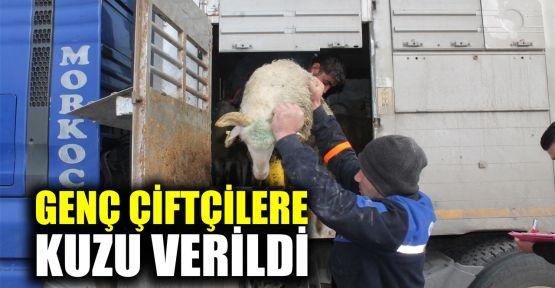 Genç çiftçilere kuzu verildi