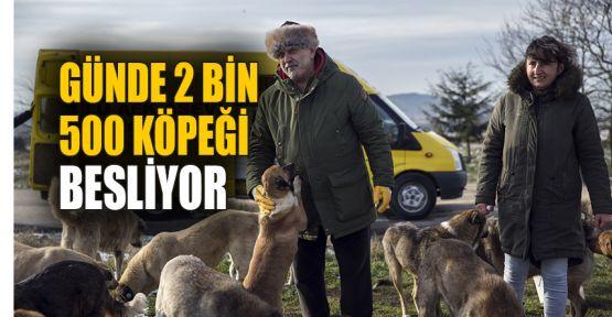 GÜNDE 2 bin 500 köpeği besliyor