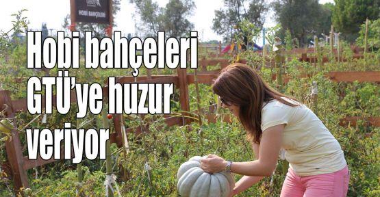 Hobi bahçeleri GTÜ'ye huzur veriyor