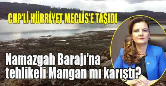 Hürriyet: Namazgah Barajı'na tehlikeli mangan mı karıştı?
