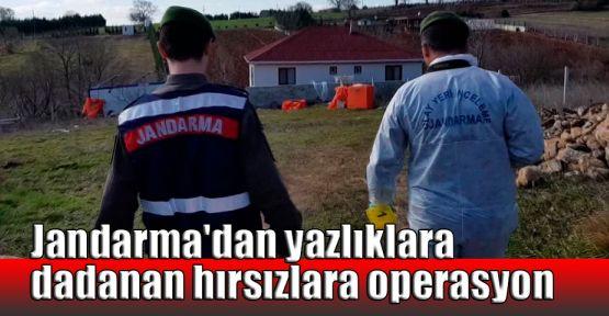 Jandarma'dan yazlıklara dadanan hırsızlara operasyon