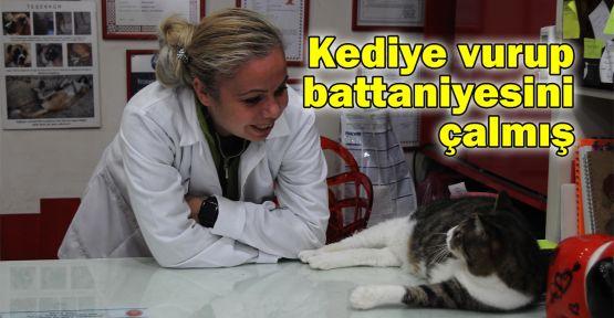 Kediye vurup battaniyesini çalmış