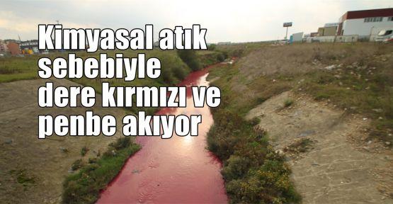 Kimyasal atık nedeniyle dere kırmızı ve penbe akıyor