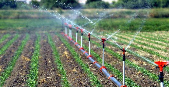 Kocaeli'de 13 bin 79 dekar tarım arazisi sulandı