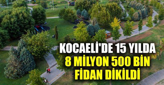 Kocaeli'de 15 yılda 8 milyon 500 bin fidan dikildi