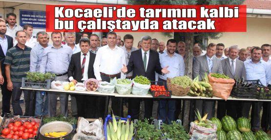 Kocaeli'de tarımın kalbi bu çalıştayda atacak