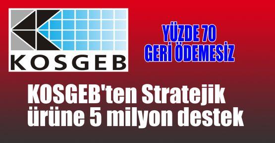 KOSGEB'ten Stratejik ürüne 5 milyon destek