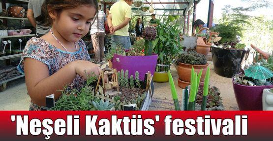 'Neşeli Kaktüs' festivali