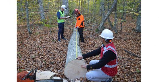 Orman işçilerinin sınavını ormanda yaptılar
