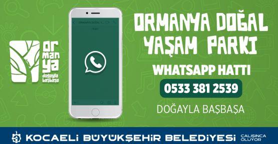 Ormanya Whatsapp hattı oluşturuldu