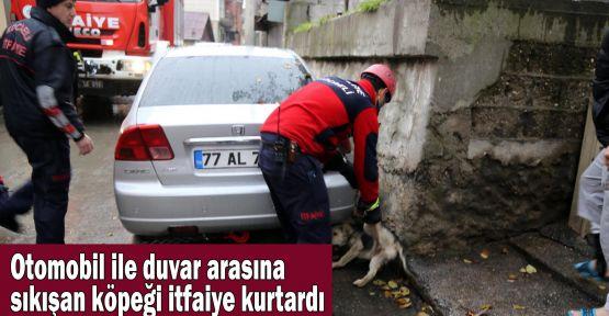 Otomobil ile duvar arasına sıkışan köpeği itfaiye kurtardı
