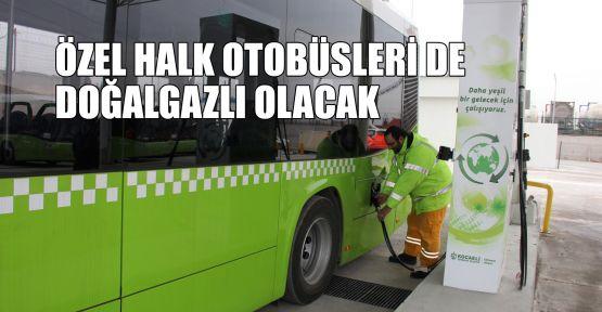 Özel halk otobüsleri de doğalgazlı olacak