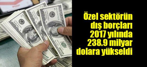 Özel sektörün dış borçları 2017 yılında 238.9 milyar dolara yükseldi