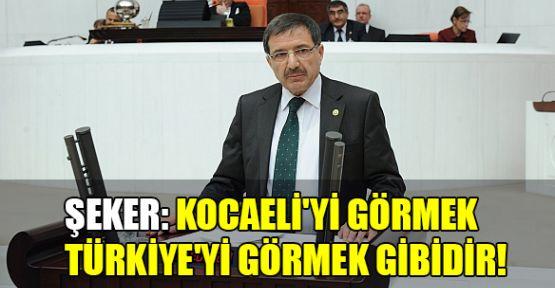 Şeker: Kocaeli'yi görmek Türkiye'yi görmek gibidir!