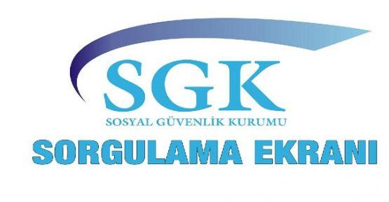 SGK Sorgulama Sayfası İle Hizmet Dökümü, Prim Gün Sayısı ve SGK Borç Öğrenme Gibi Bir Çok İşlem Gerçekleştirilebilir