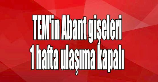 TEM'in Abant gişeleri 1 hafta ulaşıma kapalı