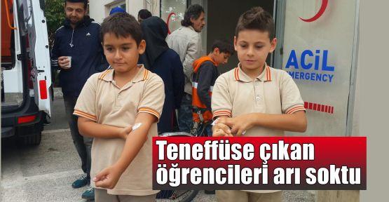 Teneffüste öğrencileri arı soktu