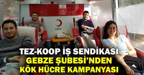 TEZ-KOOP İş Sendikası Gebze Şubesi'nden kök hücre kampanyası