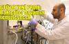 GTÜ'de yeni proje: Bakteriler havamızı temizleyecek