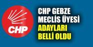 CHP Gebze meclis üyesi adayları belli...
