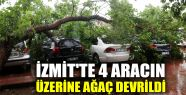 İzmit'te 4 aracın üzerine ağaç devrildi...