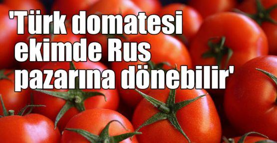 'Türk domatesi ekimde Rus pazarına dönebilir'