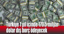Türkiye 1 yıl içinde 170.5 milyar dolar dış borç ödeyecek