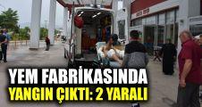 Yem fabrikasında yangın çıktı: 2 yaralı