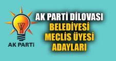 AK Parti Dilovası Meclis üyesi adayları
