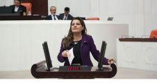 Hürriyet yardım çığlıklarını Meclis'e taşıdı